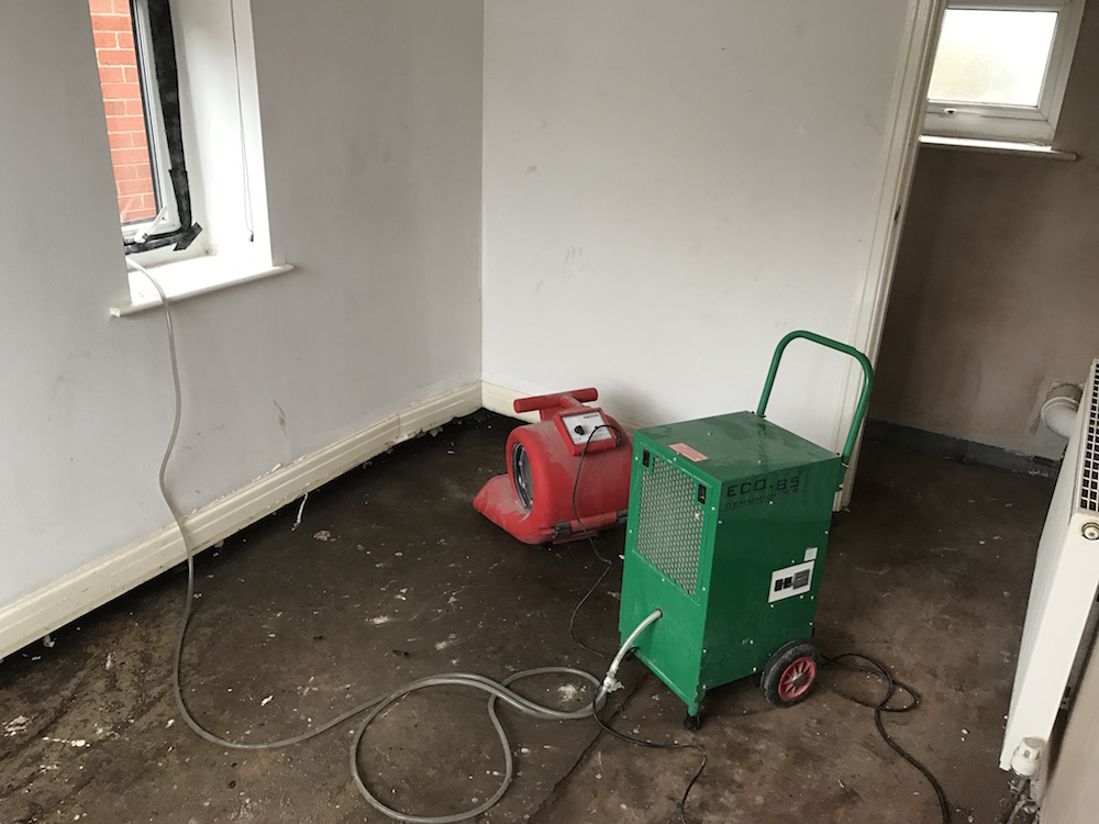 Forced drying with commercial grade air mover and dehumidifiers following long term leak from internal pipes.